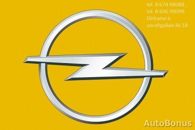 Opel Movano, 2009