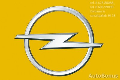 Opel Movano, 2013