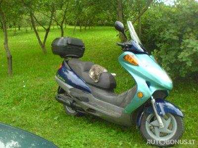 Honda, Mopedas/Motoroleris