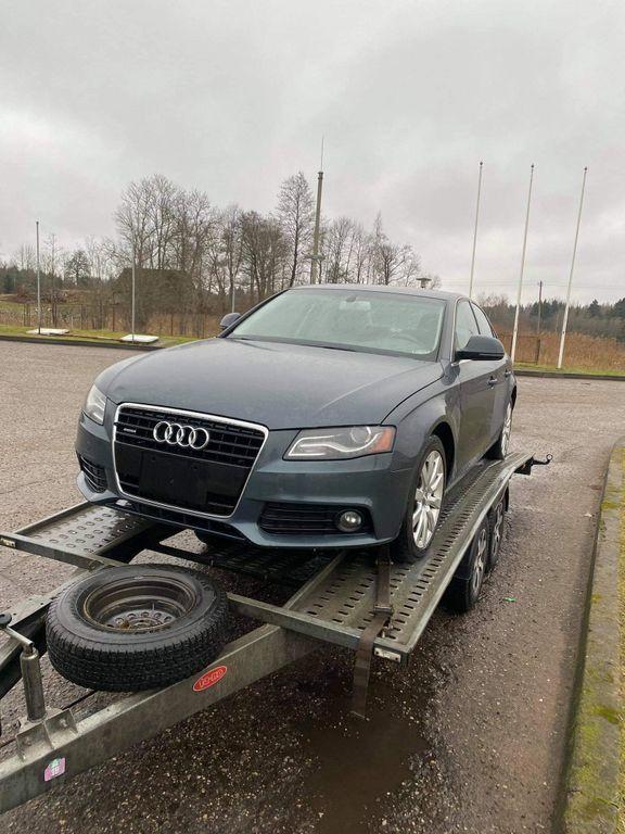 Audi, Visureigis