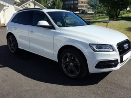 Audi Q5 cross-country