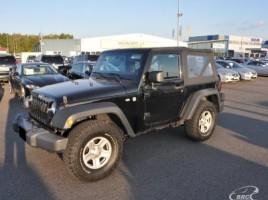 Jeep Wrangler visureigis