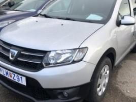 Dacia Logan visureigis