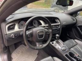Audi, Visureigis | 4