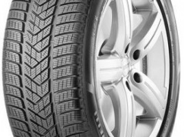 Pirelli PIRELLI SCORPION WINTER MO