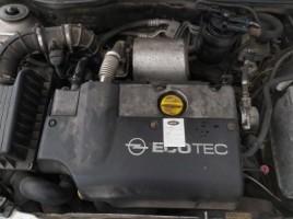 Opel, Hečbekas | 1